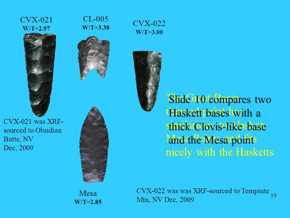 The Great Basin thinned point has similarities to Alaskan Mesa Points and fits nicely with the Hasketts CVX-021 W/T=2.97 CVX-022 W/T=3.00 CVX-021 was XRF- sourced to Obsidian Butte, NV Dec, 2009 CVX-022 was was XRF-sourced to Tempiute Mtn, NV Dec, 2009 Mesa W/T=2.85 CL-005 W/T=3.38 10 Slide 10 compares two Haskett bases with a thick Clovis-like base and the Mesa point
