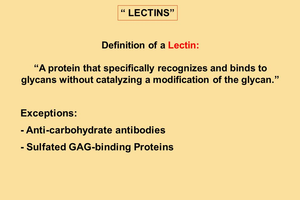 Definition of a Lectin: A protein that specifically recognizes and binds to glycans without catalyzing a modification of the glycan. Exceptions: - Anti-carbohydrate antibodies - Sulfated GAG-binding Proteins LECTINS