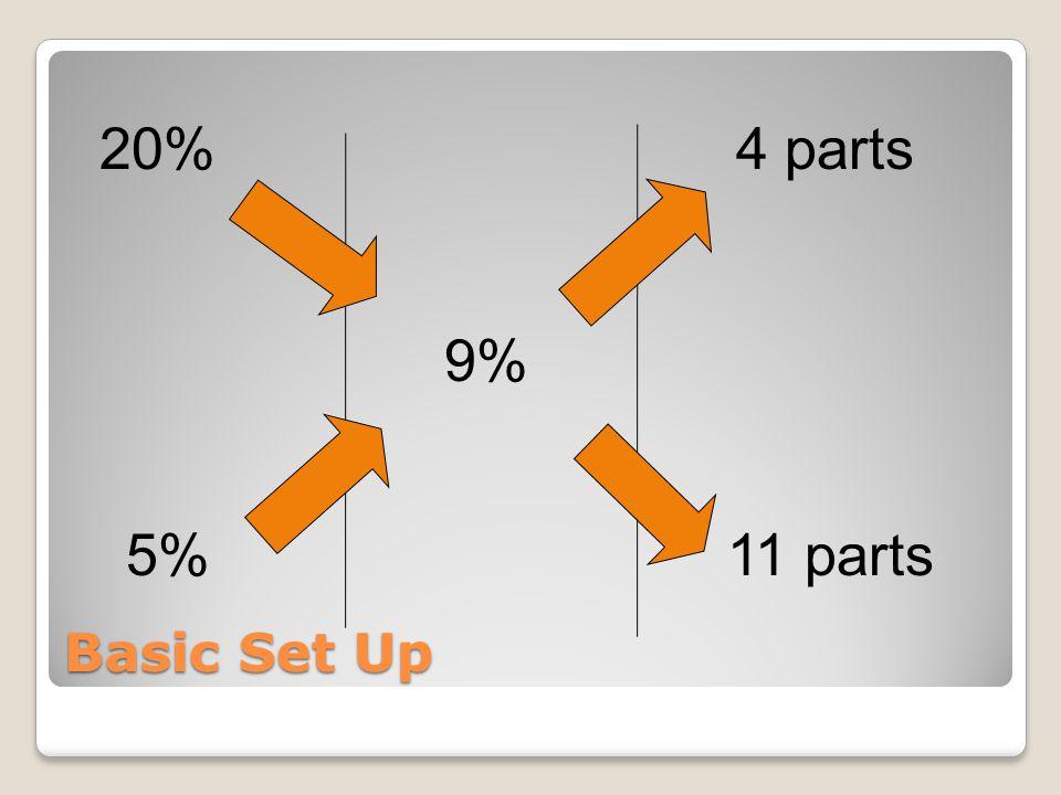 Basic Set Up 20% 5% 9% 11 parts 4 parts