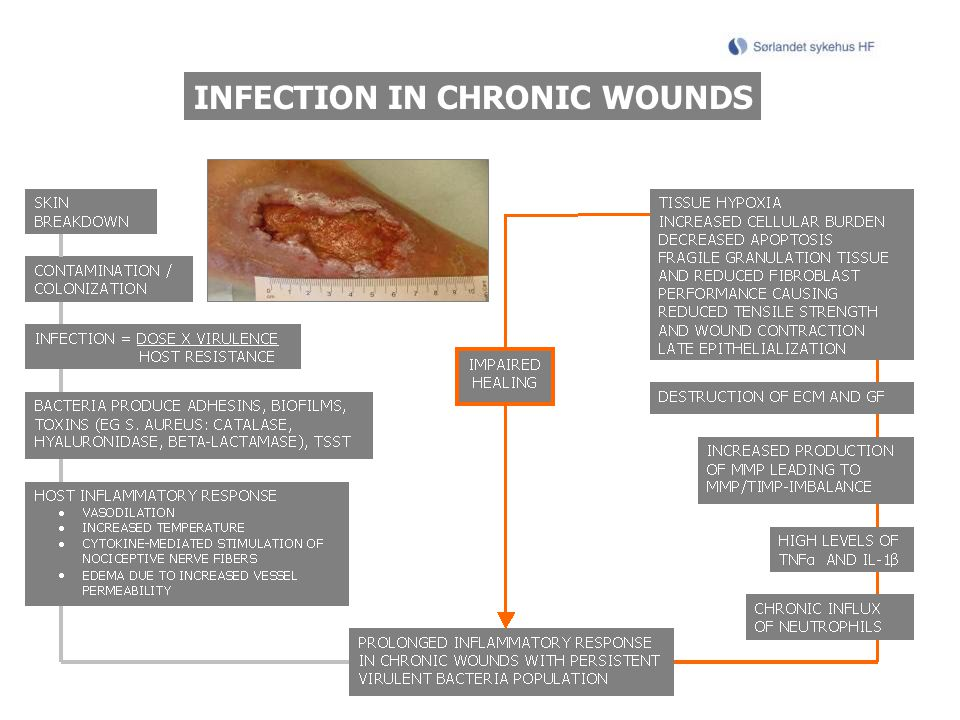 INFECTION IN CHRONIC WOUNDS