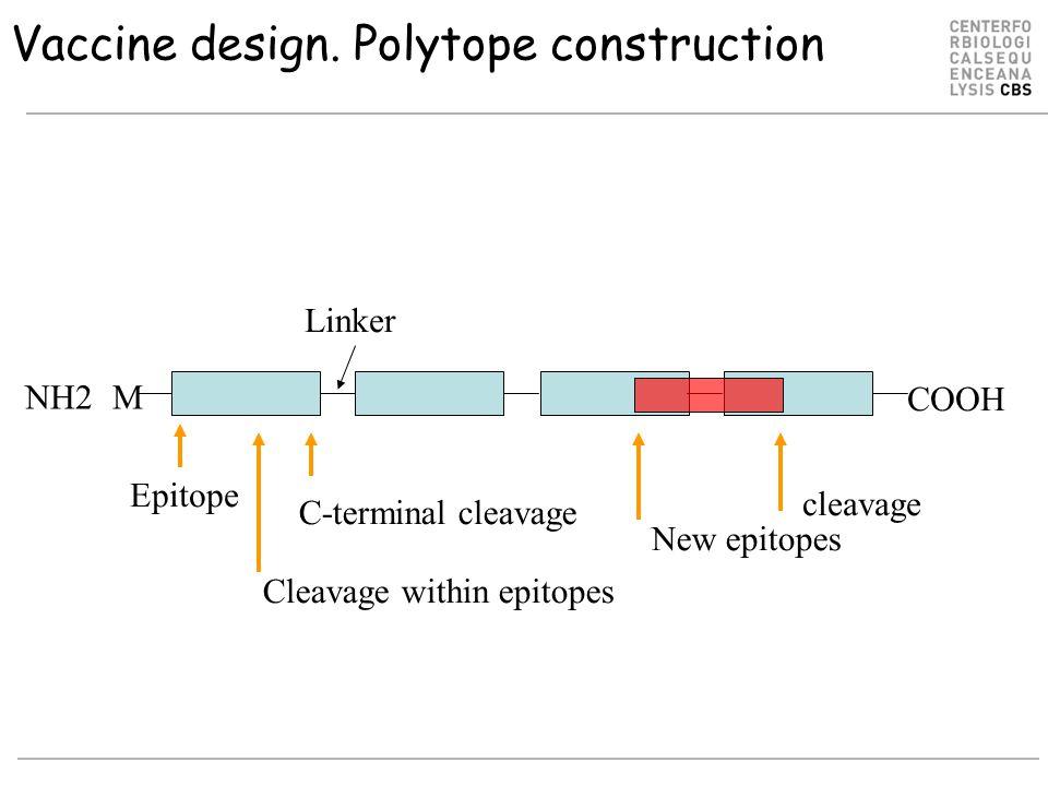 Vaccine design.