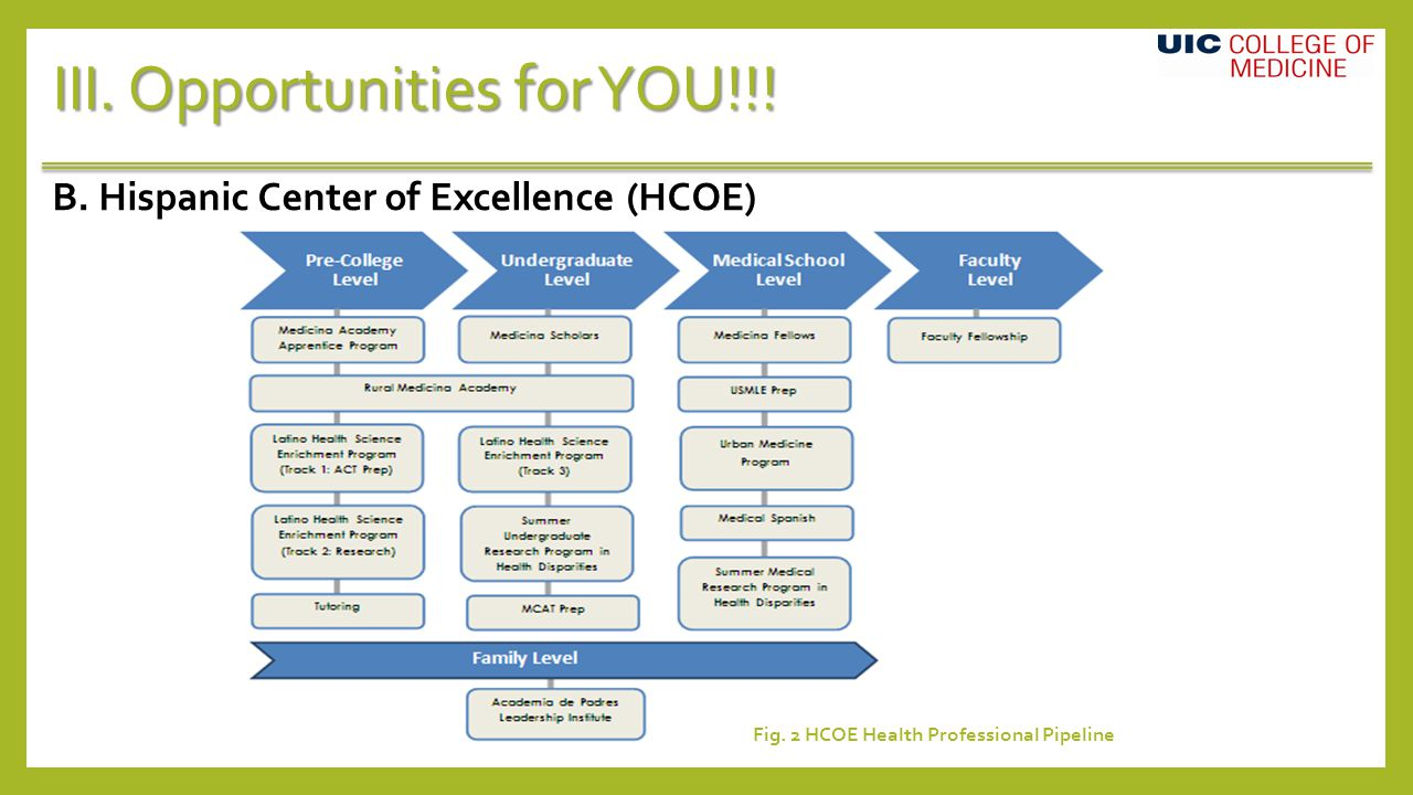 III. Opportunities for YOU!!. B. Hispanic Center of Excellence (HCOE) Fig.