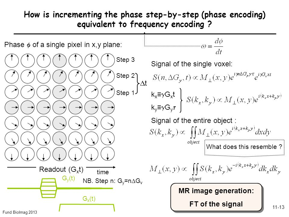 Fund BioImag 2013 11-13 Step 3 Step 2 Step 1 Phase  of a single pixel in x,y plane: Readout (G x t) G x (t) G y (t) How is incrementing the phase step-by-step (phase encoding) equivalent to frequency encoding .