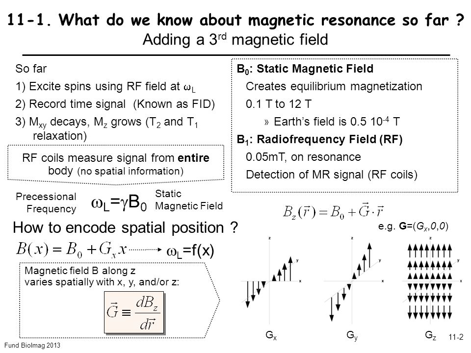 Fund BioImag 2013 11-2 11-1. What do we know about magnetic resonance so far .