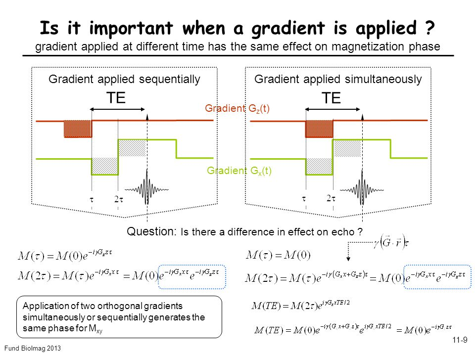 Fund BioImag 2013 11-10 What are the basic elements of the Gradient echo sequence .