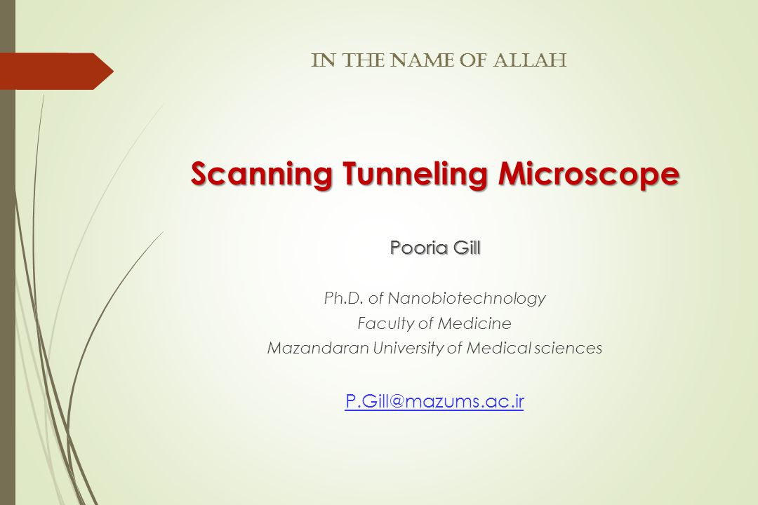 In The Name of Allah Scanning Tunneling Microscope Pooria Gill Ph.D.