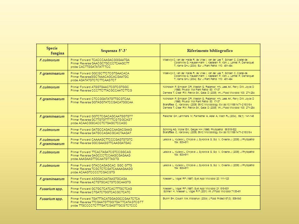 Specie fungina Sequenza 5'-3'Riferimento bibliografico F.culmorum Primer Forward TCACCCAAGACGGGAATGA Primer Reverse GAACGCTGCCCTCAAGCTT probe CACTTGGATATATTTCC Waalwijk C, van der Heide R, de Vries I, van der Lee T, Schoen C, Costel-de Corainville G, Hausen-Hahn I, Kastelein P, Kohl J, Lonnet P, Demarquet T, Kema GHJ (2004) Eur J Plant Pathol 110: 481-494 F.graminearum Primer Forward GGCGCTTCTCGTGAACACA Primer ReverseGGCTAAACAGCACGAATGC probe AGATATGTCTCTTCAAGTCT Waalwijk C, van der Heide R, de Vries I, van der Lee T, Schoen C, Costel-de Corainville G, Hausen-Hahn I, Kastelein P, Kohl J, Lonnet P, Demarquet T, Kema GHJ (2004) Eur J Plant Pathol 110: 481-494 F.culmorum Primer Forward ATGGTGAACTCGTCGTGGC Primer Reverse CCCTTCTTACGCCAATCTTCG Nicholson P, Simpson DR, Weston G, Rezanoor HN, Lees AK, Parry DW, Joyce D (1998) Physiol Mol Plant Pathol 53: 17-37 Demeke T, Clear RM, Patrick SK, Gaba D (2005) Int J Food Microbiol 103: 271-284 F.graminearum Primer Forward CTCCGGATATGTTGCGTCAA Primer Reverse GGTAGGTATCCGACATGGCAA Nicholson P, Simpson DR, Weston G, Rezanoor HN, Lees AK, Parry DW, Joyce D (1998) Physiol Mol Plant Pathol 53: 17-37 Brandffass C, Karlovsky (2006) BMC Microbiology 6:4 doi:10.1186/1471-2180/6/4 Demeke T, Clear RM, Patrick SK, Gaba D (2005) Int J Food Microbiol 103: 271-284 F.graminearum Primer Forward GGTCTCGACAGCAATGGTGTT Primer Reverse GCTTGTGTTTTTCGTGGCAGT probe ACAACGGCACCTCTGAGCTCCAGC Reischer GH, Lemmens M, Farnleitner A, Adler A, Mach RL (2004), 59(1): 141-146 F.culmorum Primer Forward GATGCCAGACCAAGACGAAG Primer Reverse GATGCCAGACGCACTAAGAT Schilling AG, Moller EM, Geiger HH (1996) Phytopathol 86:515-522 Brandffass C, Karlovsky (2006) BMC Microbiology 6:4 doi:10.1186/1471-2180/6/4 F.culmorum F.graminearum Primer Forward CAAAAGCTTCCCGAGTGTGTC Primer Reverse GGCGAAGGTTCAAGGATGAC Leisova L, Kucera L, Chrpova J, Sykorova S, Sıp V, Ovesna J (2006) J Phytopathol 154: 603–611 F.culmorum Primer Forward TTCACTAGATCGTCCGGCAG Primer Reverse GAGCCCTCCAAGCG