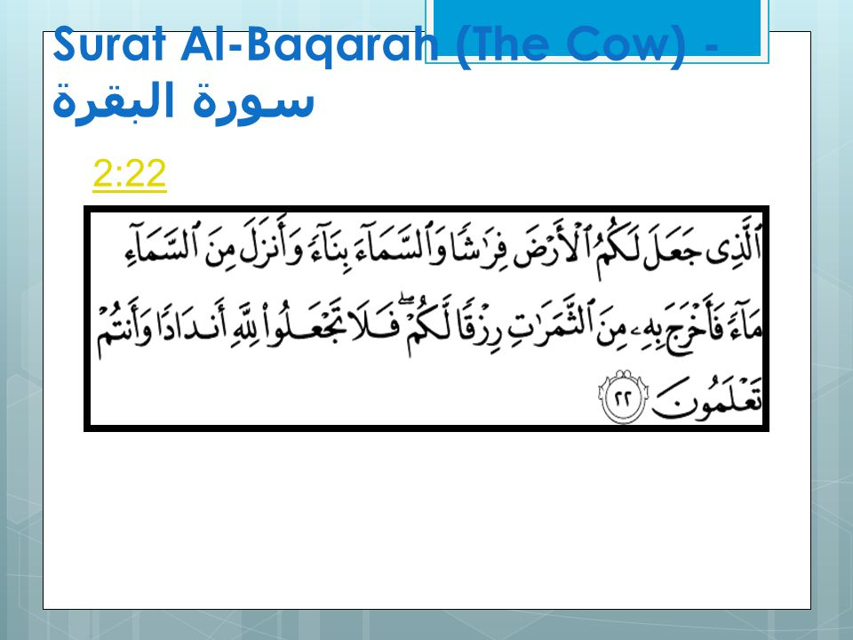 Surat Al-Baqarah (The Cow) - سورة البقرة Sahih International [He] who made for you the earth a bed [spread out] and the sky a ceiling and sent down from the sky, rain and brought forth thereby fruits as provision for you.