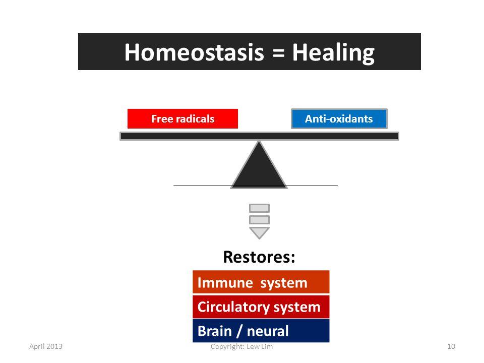 Free radicals Anti-oxidants Restores: Homeostasis = Healing Immune system Circulatory system Brain / neural April 201310Copyright: Lew Lim