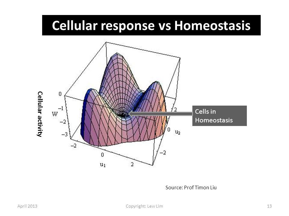 April 2013Copyright: Lew Lim13 Cellular activity Cells in Homeostasis Source: Prof Timon Liu Cellular response vs Homeostasis