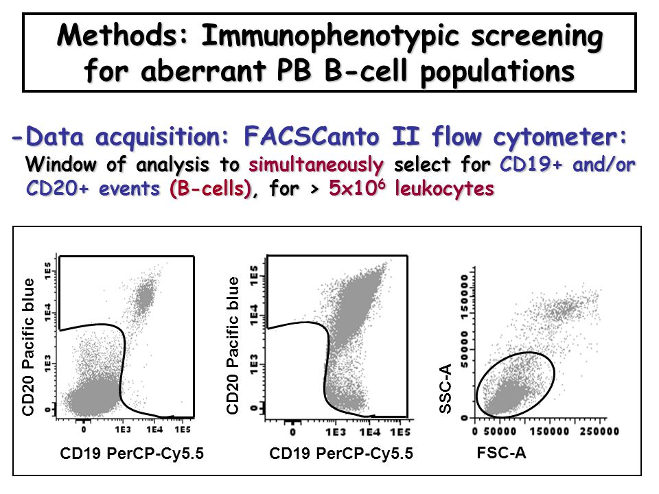 Methods: Immunophenotypic screening for aberrant PB B-cell populations -Data acquisition: FACSCanto II flow cytometer: Window of analysis to simultaneously select for CD19+ and/or Window of analysis to simultaneously select for CD19+ and/or CD20+ events (B-cells), for > 5x10 6 leukocytes CD20+ events (B-cells), for > 5x10 6 leukocytes CD20 Pacific blue CD19 PerCP-Cy5.5 CD20 Pacific blue FSC-A SSC-A
