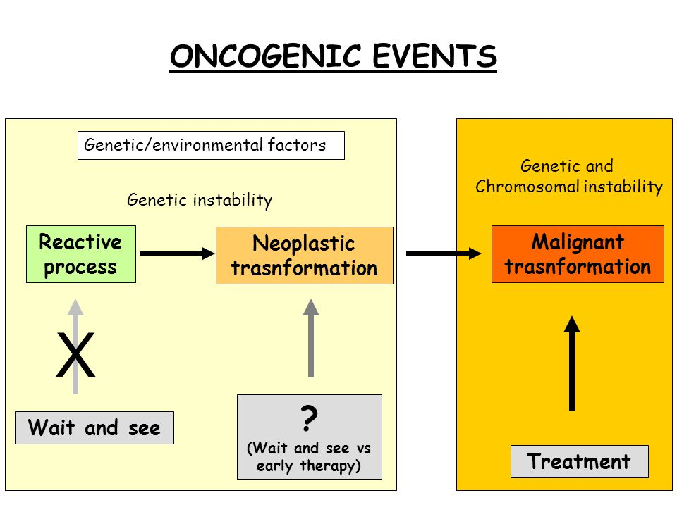Neoplastic trasnformation Reactive process Malignant trasnformation Treatment .