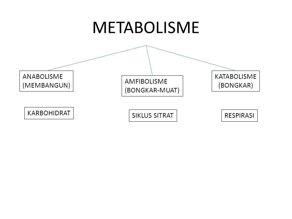 METABOLISME ANABOLISME (MEMBANGUN) KATABOLISME (BONGKAR) AMFIBOLISME (BONGKAR-MUAT) KARBOHIDRAT SIKLUS SITRATRESPIRASI