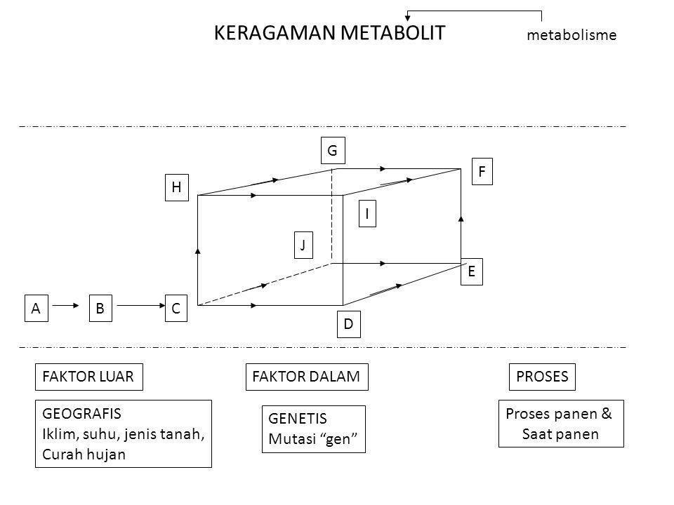 KERAGAMAN METABOLIT metabolisme ABC D E F G H I J FAKTOR LUARFAKTOR DALAMPROSES GEOGRAFIS Iklim, suhu, jenis tanah, Curah hujan GENETIS Mutasi gen Proses panen & Saat panen