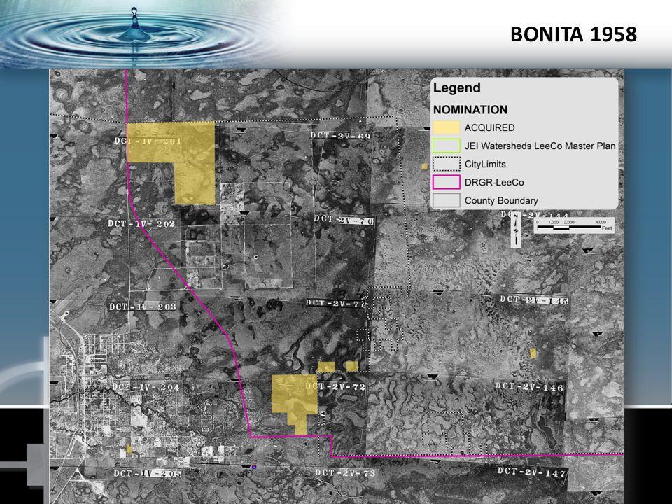 BONITA 1958