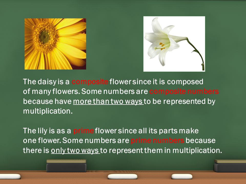 Use arrays to find out if a number is prime or composite.