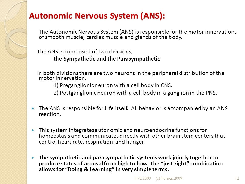Autonomic Nervous System (ANS): The Autonomic Nervous System (ANS) is responsible for the motor innervations of smooth muscle, cardiac muscle and glan