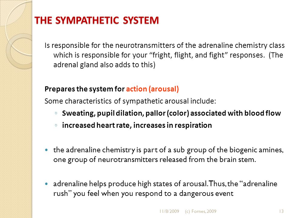 "THE SYMPATHETIC SYSTEM Is responsible for the neurotransmitters of the adrenaline chemistry class which is responsible for your ""fright, flight, and f"