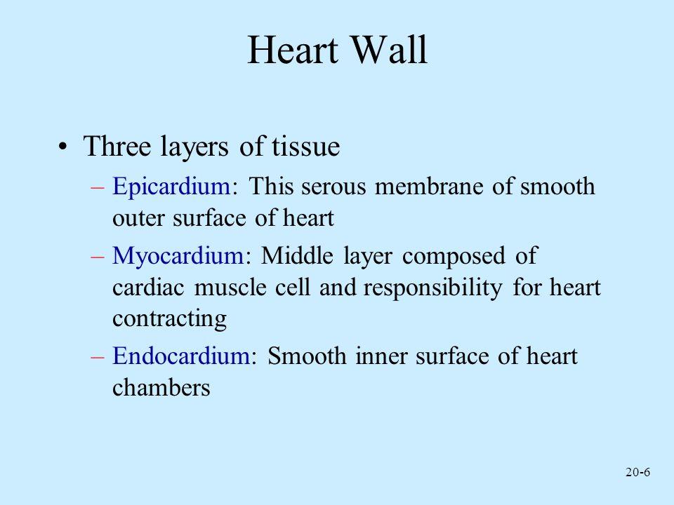 20-27 Cardiac Cycle
