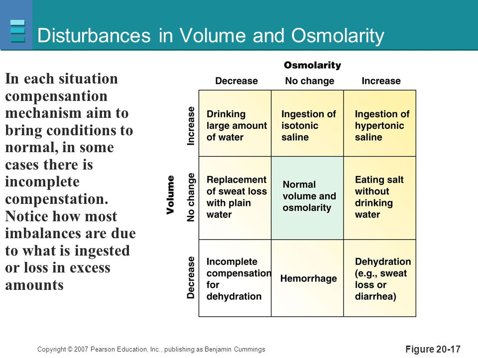 Copyright © 2007 Pearson Education, Inc., publishing as Benjamin Cummings Disturbances in Volume and Osmolarity Figure 20-17 In each situation compens