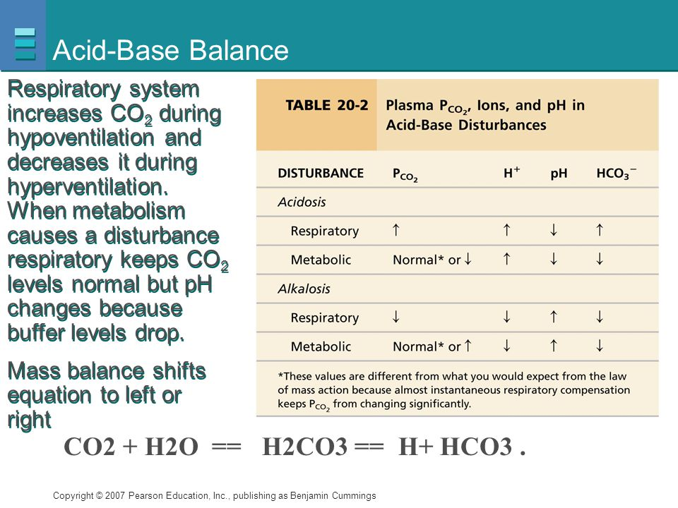 Copyright © 2007 Pearson Education, Inc., publishing as Benjamin Cummings Acid-Base Balance Respiratory system increases CO 2 during hypoventilation a