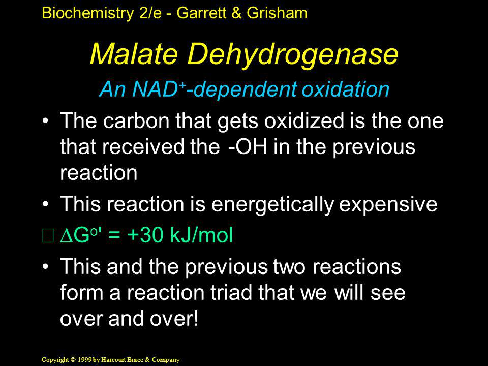 Biochemistry 2/e - Garrett & Grisham Copyright © 1999 by Harcourt Brace & Company Malate Dehydrogenase An NAD + -dependent oxidation The carbon that g