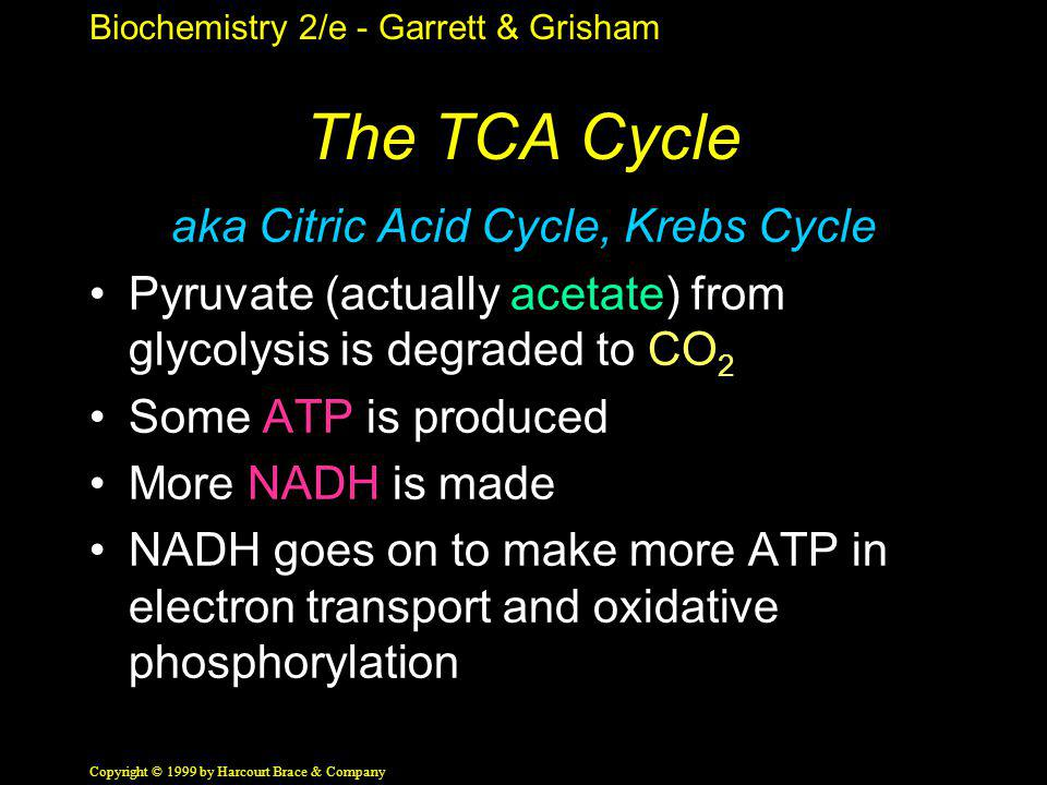 Biochemistry 2/e - Garrett & Grisham Copyright © 1999 by Harcourt Brace & Company The TCA Cycle aka Citric Acid Cycle, Krebs Cycle Pyruvate (actually