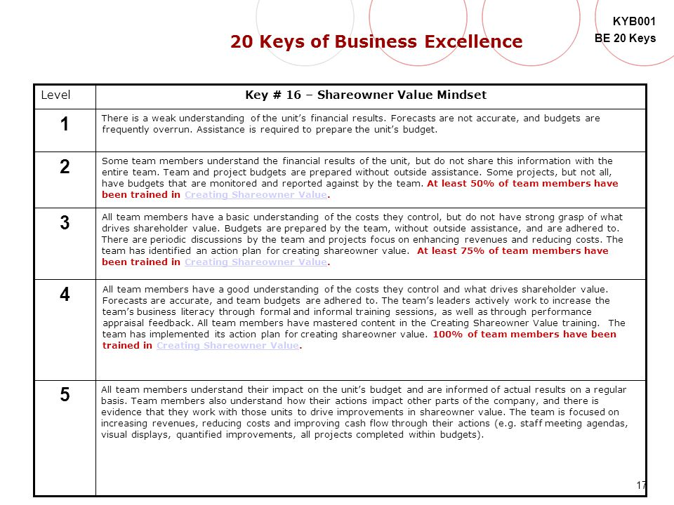 17 KYB001 BE 20 Keys Level 5 4 3 2 1 Key # 16 – Shareowner Value Mindset There is a weak understanding of the unit's financial results. Forecasts are