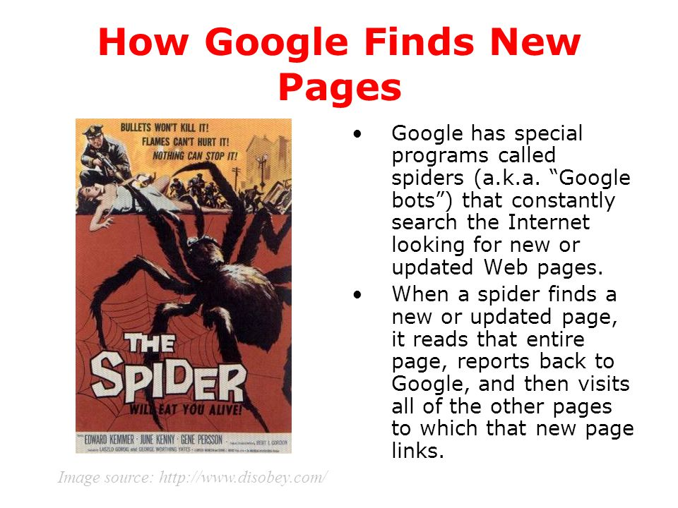 "How Google Finds New Pages Google has special programs called spiders (a.k.a. ""Google bots"") that constantly search the Internet looking for new or up"