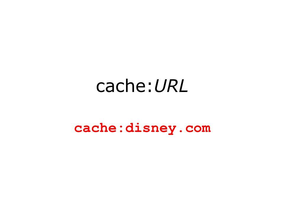 cache:URL cache:disney.com