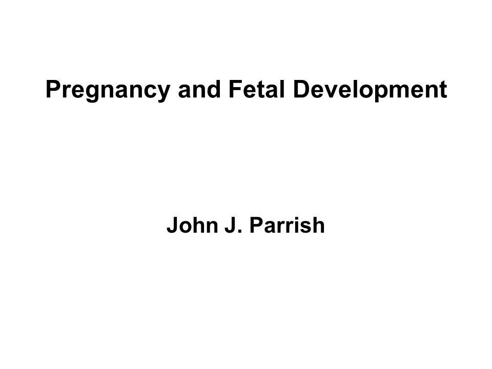 Pregnancy and Fetal Development John J. Parrish