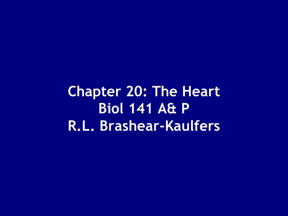 Chapter 20: The Heart Biol 141 A& P R.L. Brashear-Kaulfers