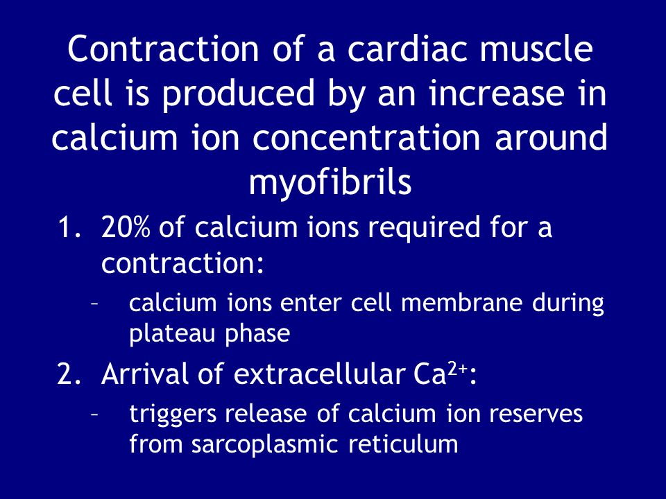 Contraction of a cardiac muscle cell is produced by an increase in calcium ion concentration around myofibrils 1.20% of calcium ions required for a contraction: –calcium ions enter cell membrane during plateau phase 2.Arrival of extracellular Ca 2+ : –triggers release of calcium ion reserves from sarcoplasmic reticulum