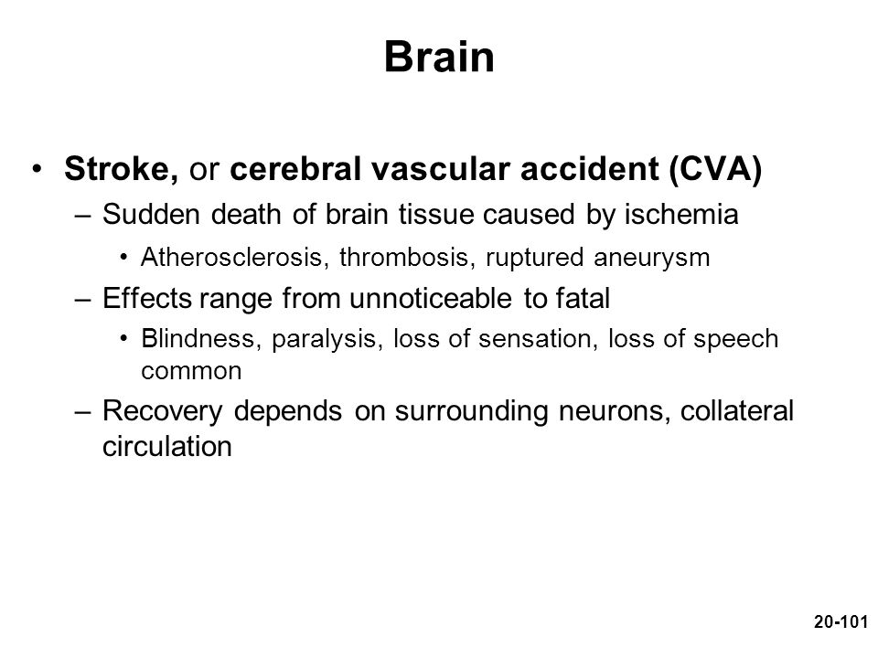 20-101 Brain Stroke, or cerebral vascular accident (CVA) –Sudden death of brain tissue caused by ischemia Atherosclerosis, thrombosis, ruptured aneury