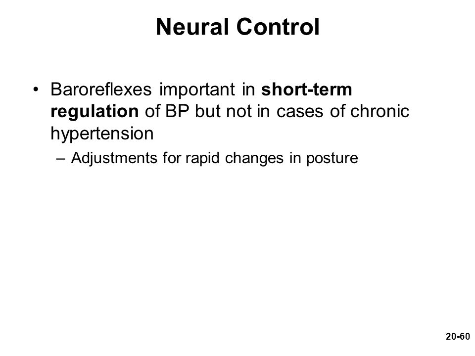 20-60 Neural Control Baroreflexes important in short-term regulation of BP but not in cases of chronic hypertension –Adjustments for rapid changes in