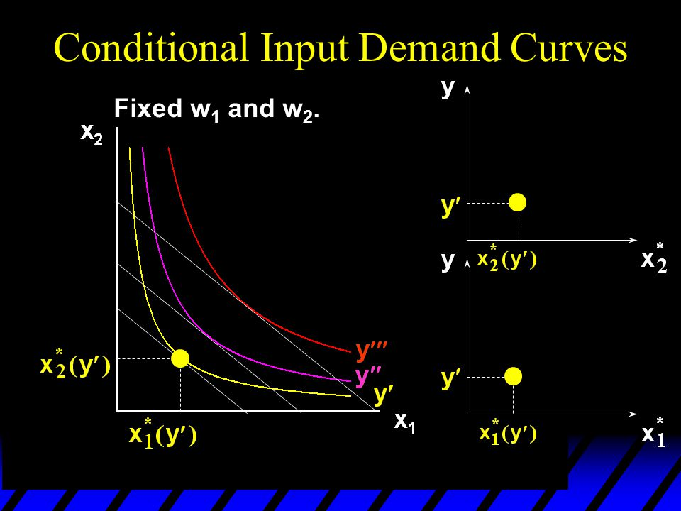 Fixed w 1 and w 2. Conditional Input Demand Curves