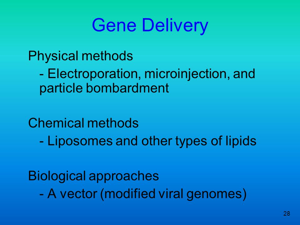 28 Gene Delivery Physical methods - Electroporation, microinjection, and particle bombardment Chemical methods - Liposomes and other types of lipids Biological approaches - A vector (modified viral genomes)