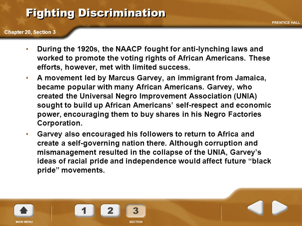 Fighting Discrimination During the 1920s, the NAACP fought for anti-lynching laws and worked to promote the voting rights of African Americans. These