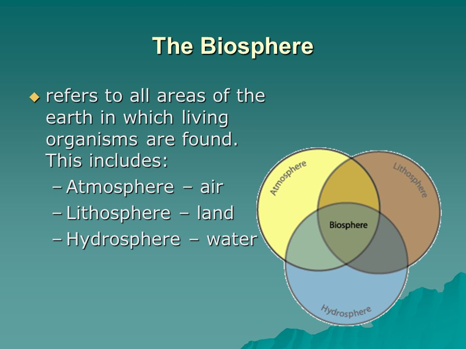 The Biosphere Biotic components – are the biological or living components of the biosphere, include all living things.