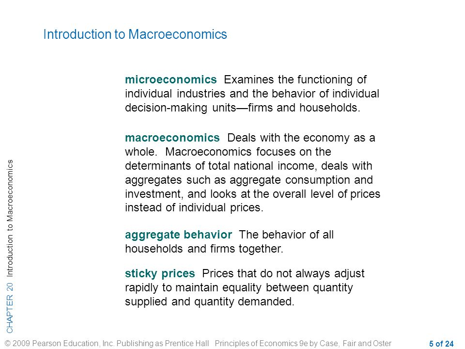 CHAPTER 20 Introduction to Macroeconomics © 2009 Pearson Education, Inc.
