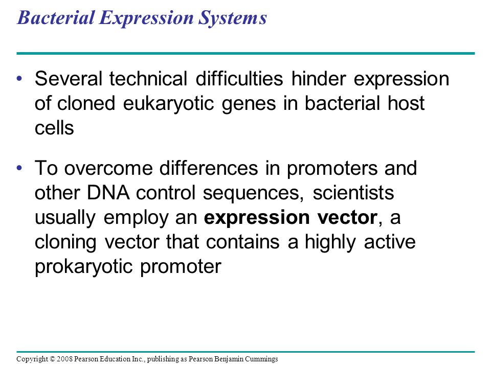 Copyright © 2008 Pearson Education Inc., publishing as Pearson Benjamin Cummings Bacterial Expression Systems Several technical difficulties hinder ex