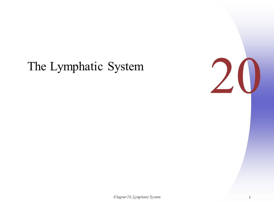 Chapter 20, Lymphatic System 1 20 The Lymphatic System