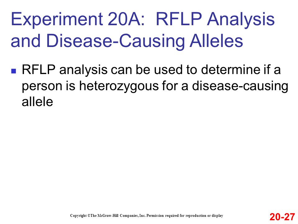 RFLP analysis can be used to determine if a person is heterozygous for a disease-causing allele Copyright ©The McGraw-Hill Companies, Inc.