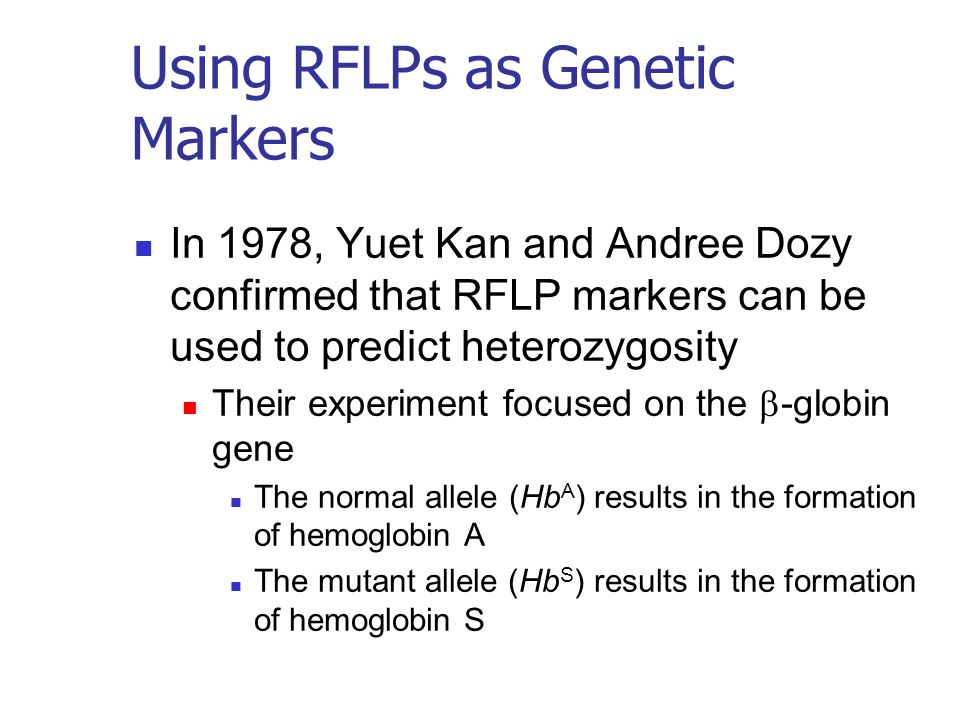 Using RFLPs as Genetic Markers In 1978, Yuet Kan and Andree Dozy confirmed that RFLP markers can be used to predict heterozygosity Their experiment focused on the  -globin gene The normal allele (Hb A ) results in the formation of hemoglobin A The mutant allele (Hb S ) results in the formation of hemoglobin S