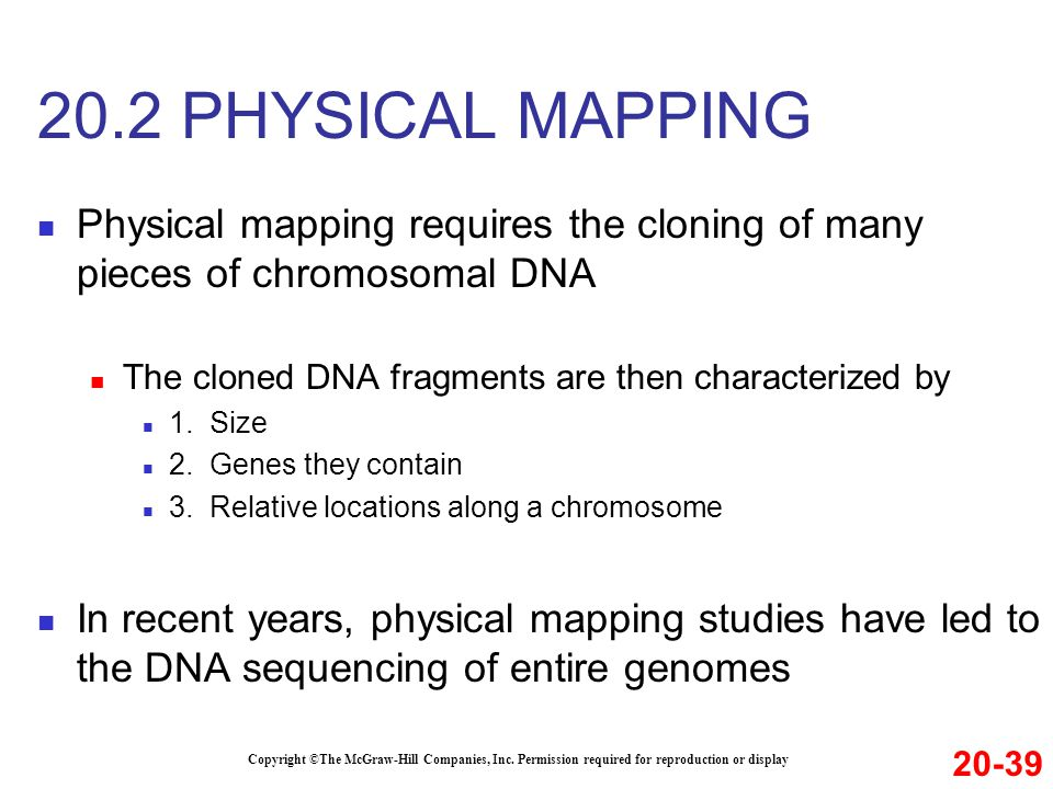 Physical mapping requires the cloning of many pieces of chromosomal DNA The cloned DNA fragments are then characterized by 1.
