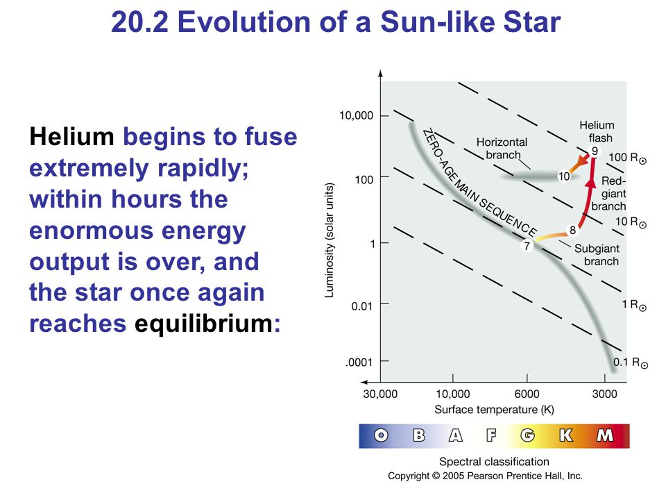 20.2 Evolution of a Sun-like Star Helium begins to fuse extremely rapidly; within hours the enormous energy output is over, and the star once again re