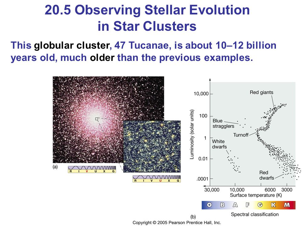 20.5 Observing Stellar Evolution in Star Clusters This globular cluster, 47 Tucanae, is about 10–12 billion years old, much older than the previous ex