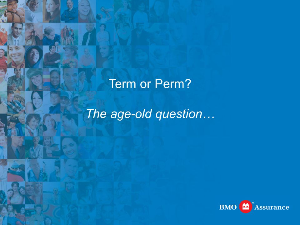 Term or Perm? The age-old question…