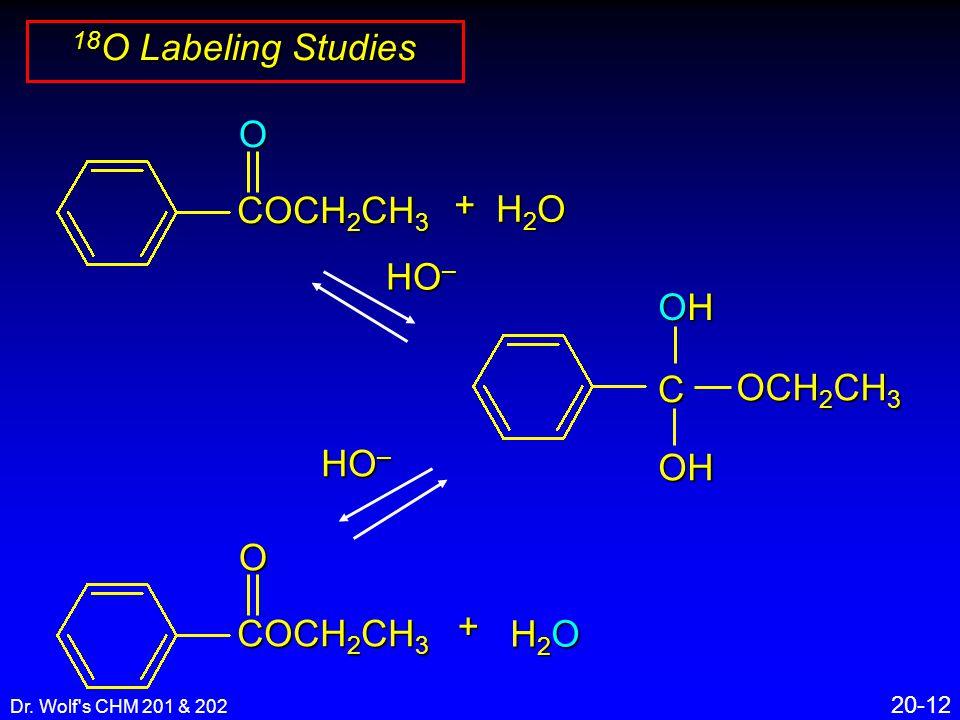 Dr. Wolf's CHM 201 & 202 20-12 18 O Labeling Studies C OHOHOHOHOH OCH 2 CH 3 + H2OH2OH2OH2O COCH 2 CH 3 O HO – COCH 2 CH 3 O+ H2OH2OH2OH2O HO –