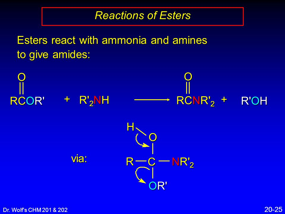 Dr. Wolf's CHM 201 & 202 20-25 Reactions of Esters + RCNR' 2 O+ Esters react with ammonia and amines to give amides: R' 2 NH RCOR' O R'OH via: C R O O